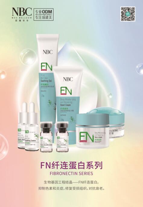 FN纤连蛋白系列